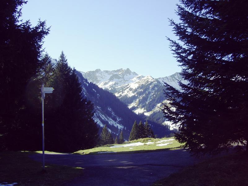 walmendingerhorn_allgaeu_kleinwalsertal_wandern2