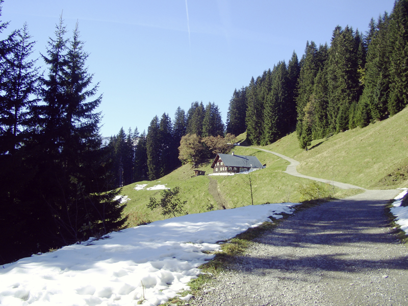 walmendingerhorn_allgaeu_kleinwalsertal_wandern6