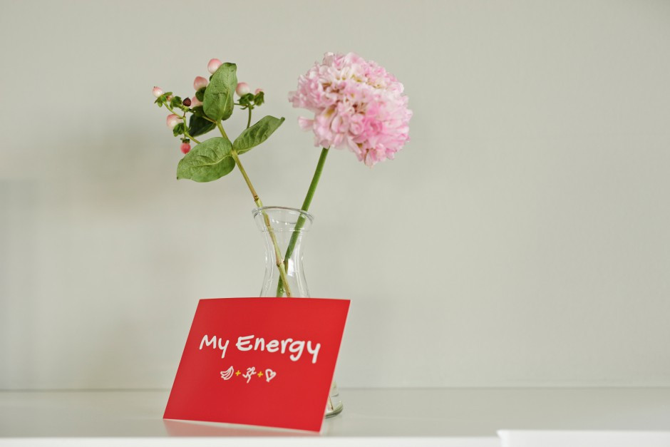 04_Dole Energy-Day 2015