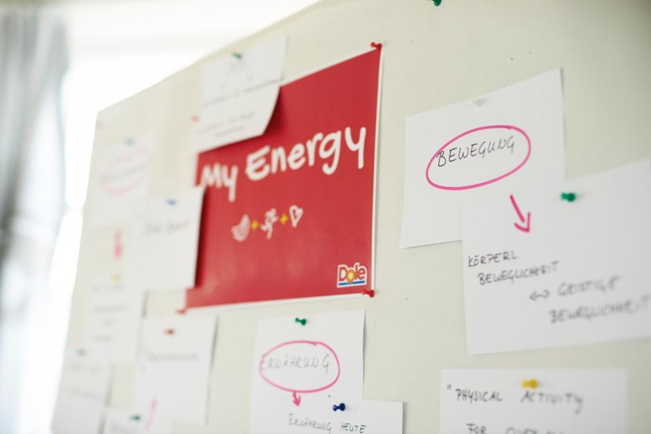 115_Dole Energy-Day 2015