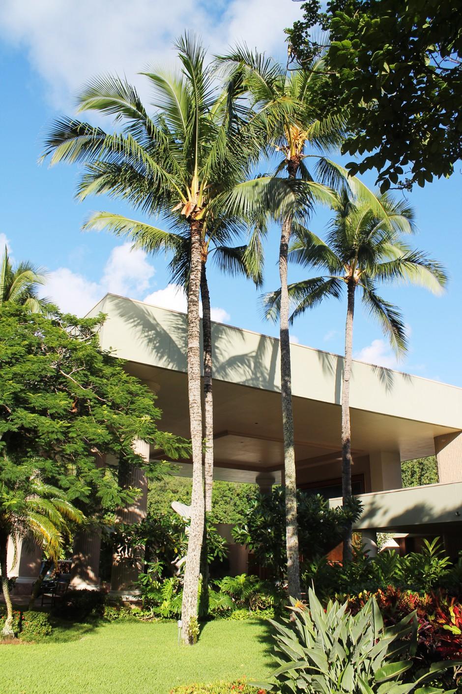 www.wildandfit.net-hawaii-kauai-lihue-marriott-hotel-13