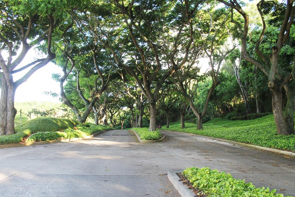 www.wildandfit.net-hawaii-kauai-lihue-marriott-hotel-18