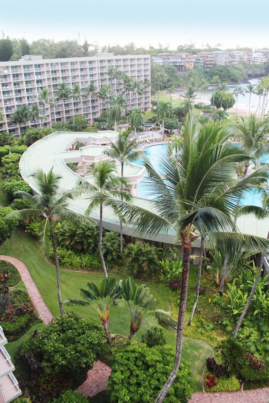www.wildandfit.net-hawaii-kauai-lihue-marriott-hotel-21