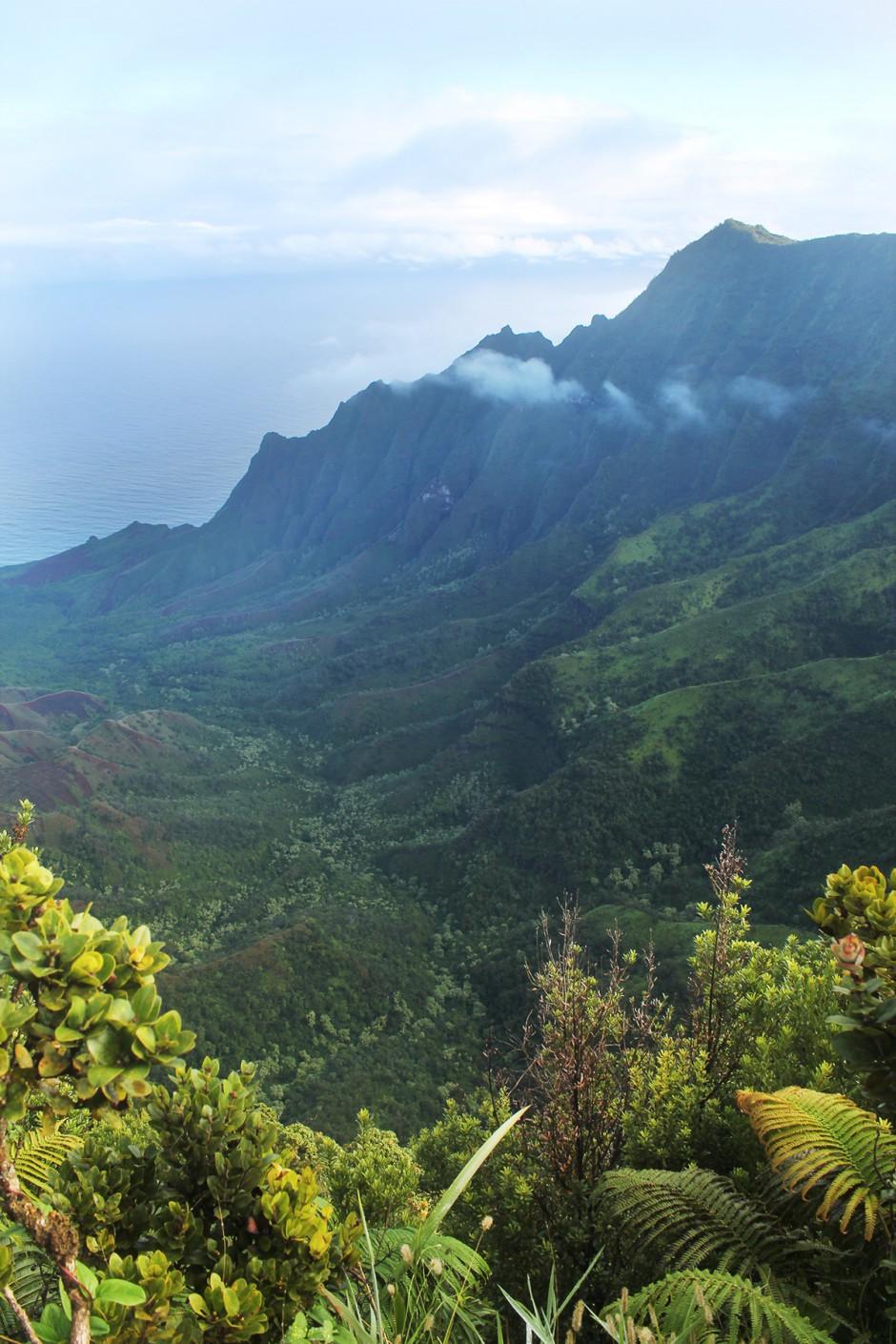 www.wildandfit.net-kauai-napali-coast-lookout-8