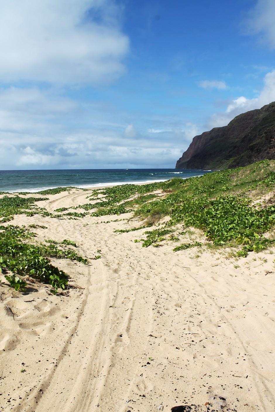 www.wildandfit.net-kauai-polihale-beach-7