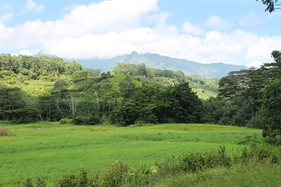 www.wildandfit.net-kauai-sleeping-giant-13
