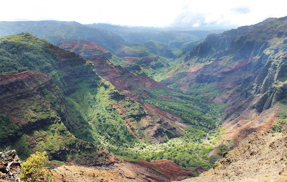 www.wildandfit.net-kauai-waimea-canyon-1