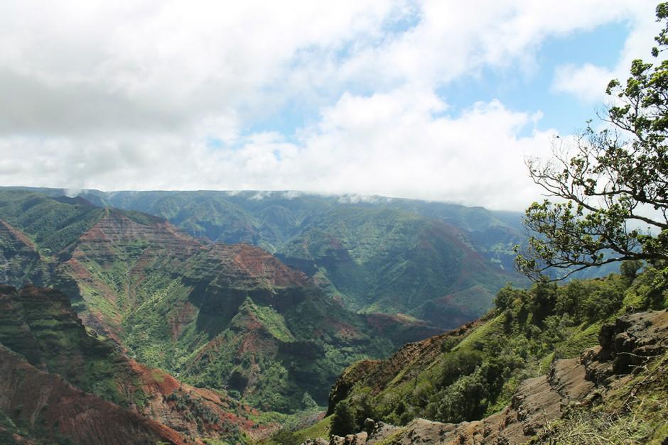 www.wildandfit.net-kauai-waimea-canyon-3