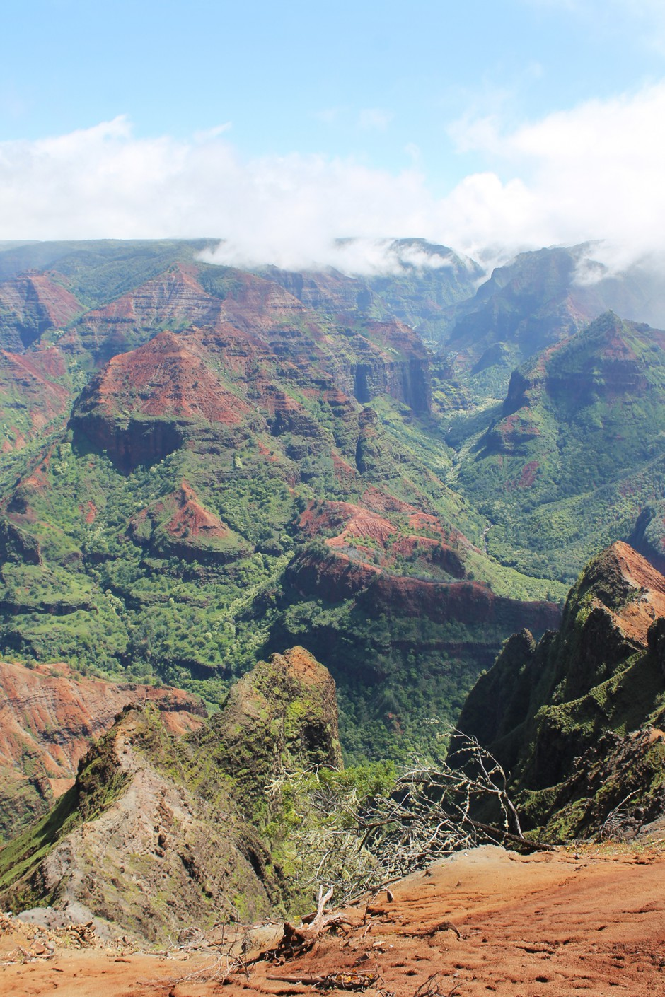 www.wildandfit.net-kauai-waimea-canyon-5