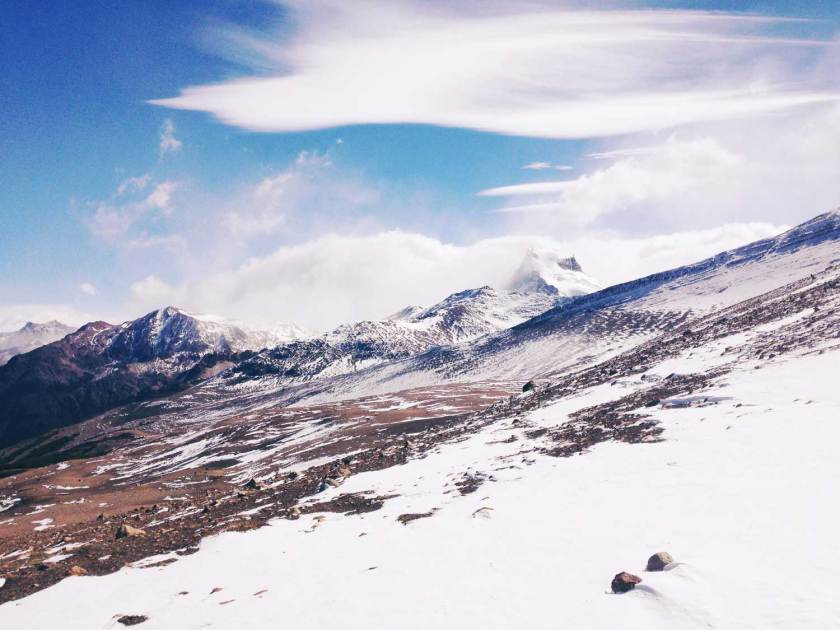 patagonien-el-chalten-huemul