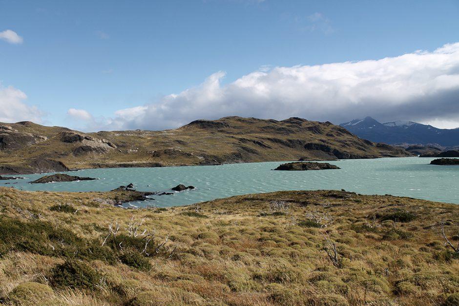 www.wildandfit.net_patagonien_torres_del_paine_chile_14