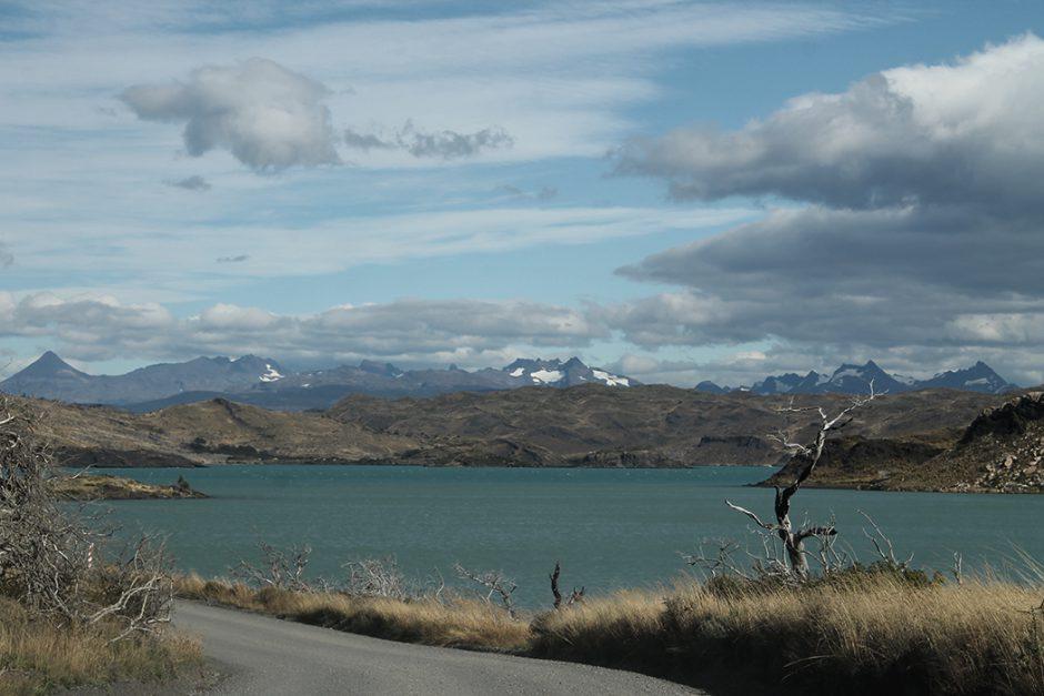 www.wildandfit.net_patagonien_torres_del_paine_chile_33