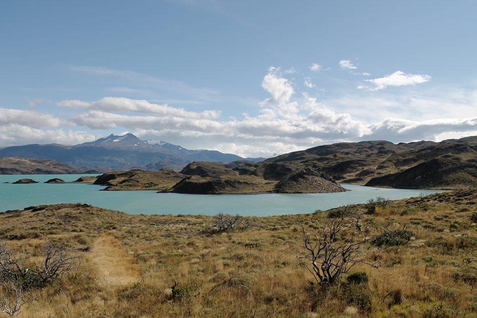 www.wildandfit.net_patagonien_torres_del_paine_chile_35
