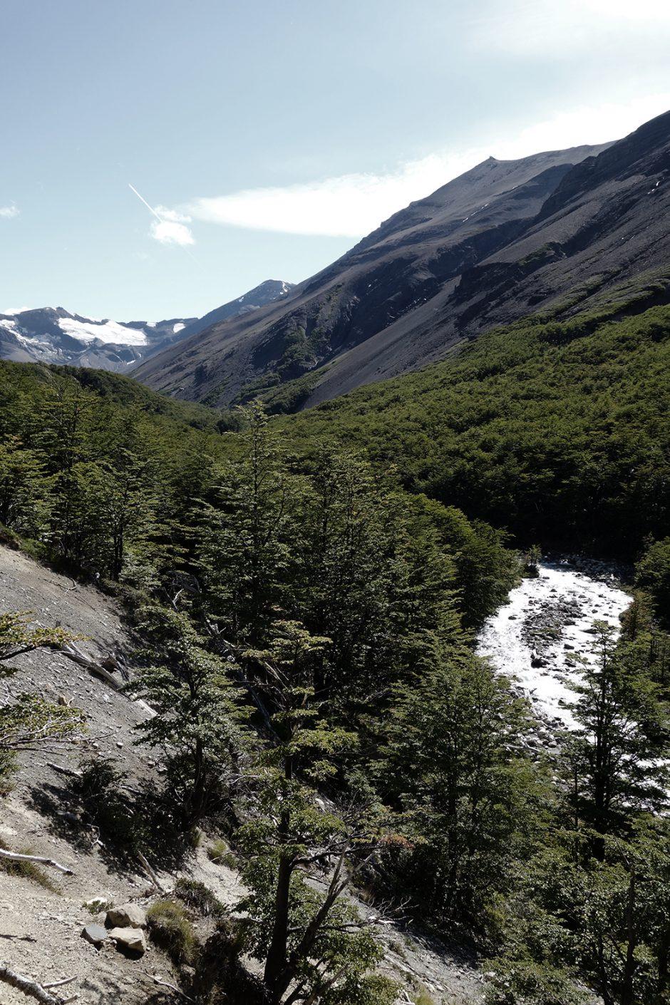 www.wildandfit.net_patagonien_torres_del_paine_chile_50