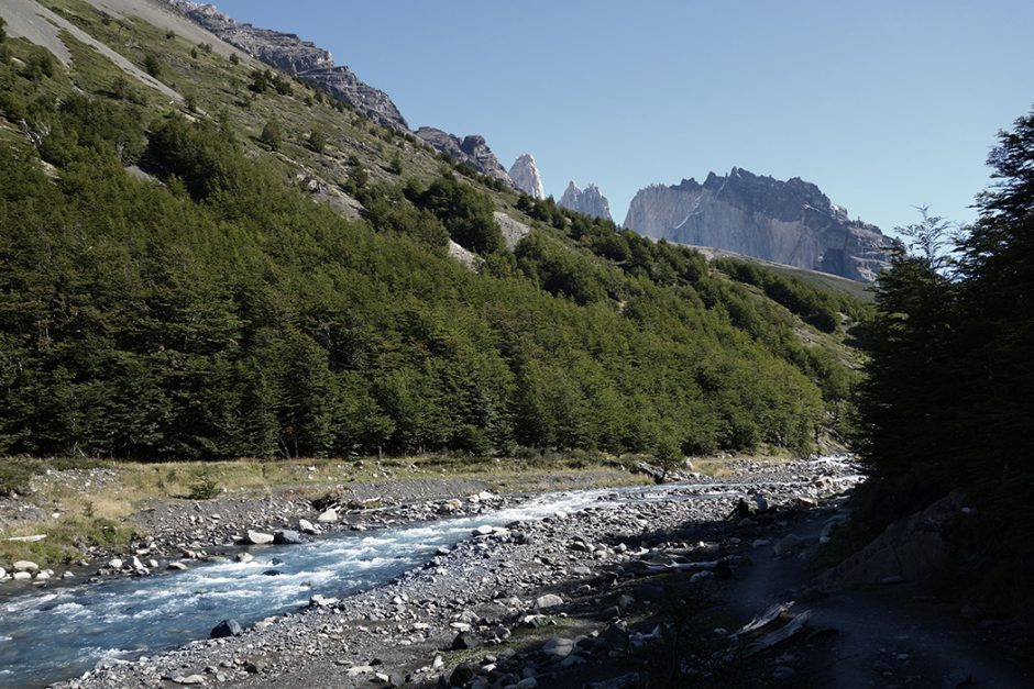 www.wildandfit.net_patagonien_torres_del_paine_chile_52