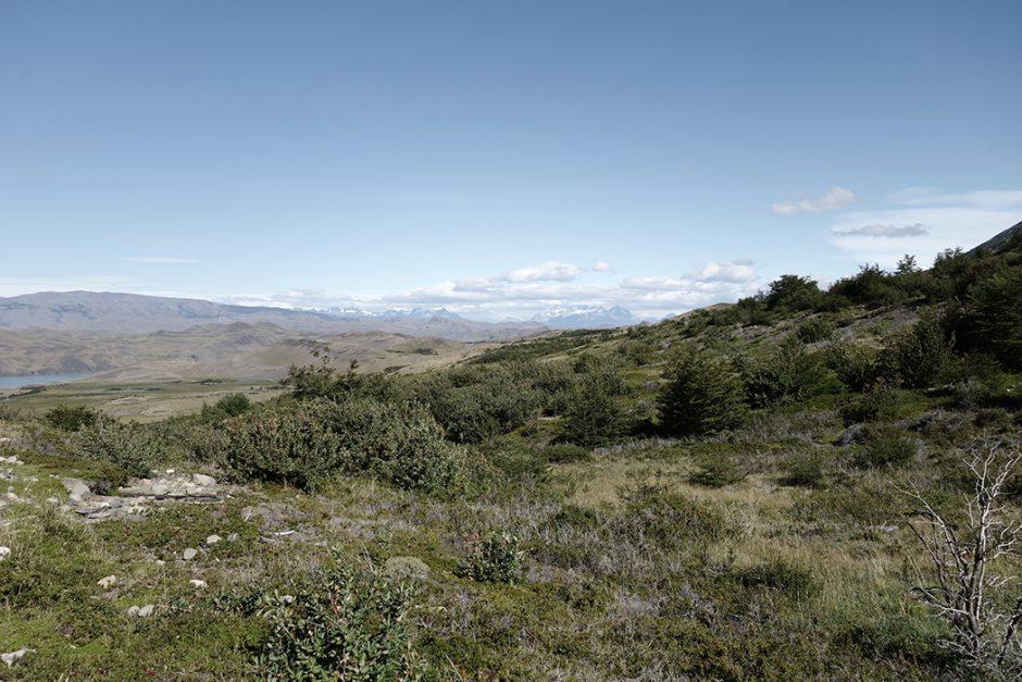 www.wildandfit.net_patagonien_torres_del_paine_chile_57