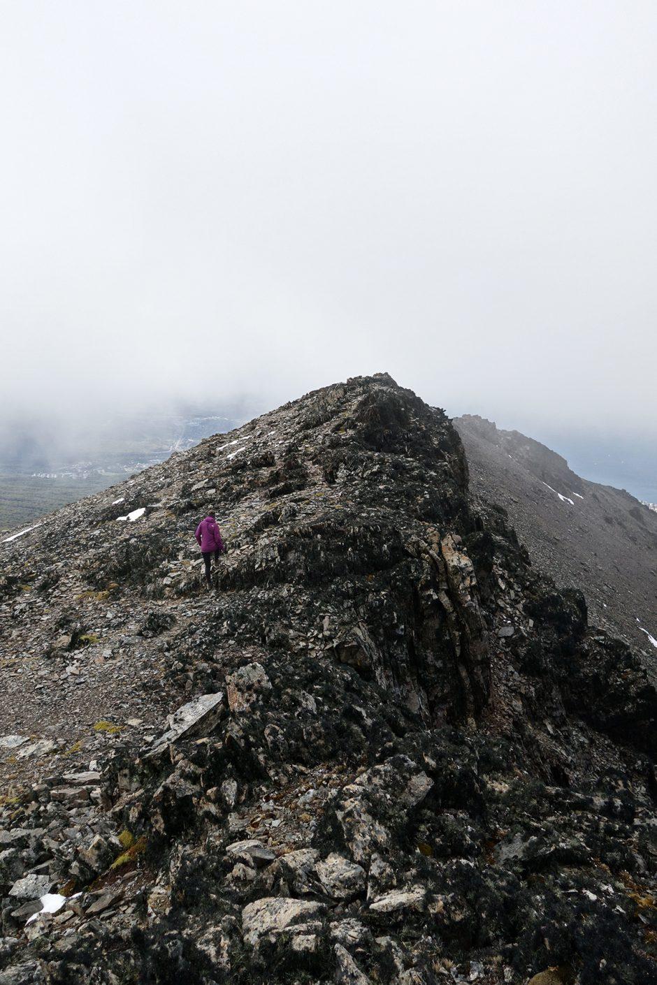 www.wildandfit.net-feuerland-patagonien-ushuaia-magellan-21