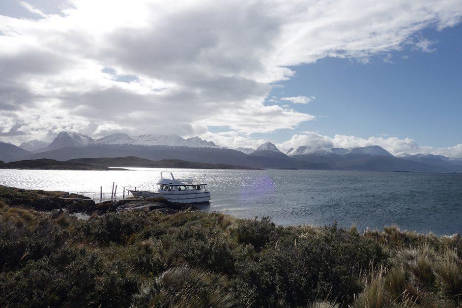 www.wildandfit.net-feuerland-patagonien-ushuaia-magellan-46