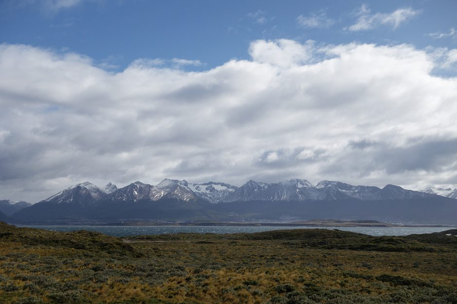 www.wildandfit.net-feuerland-patagonien-ushuaia-magellan-48