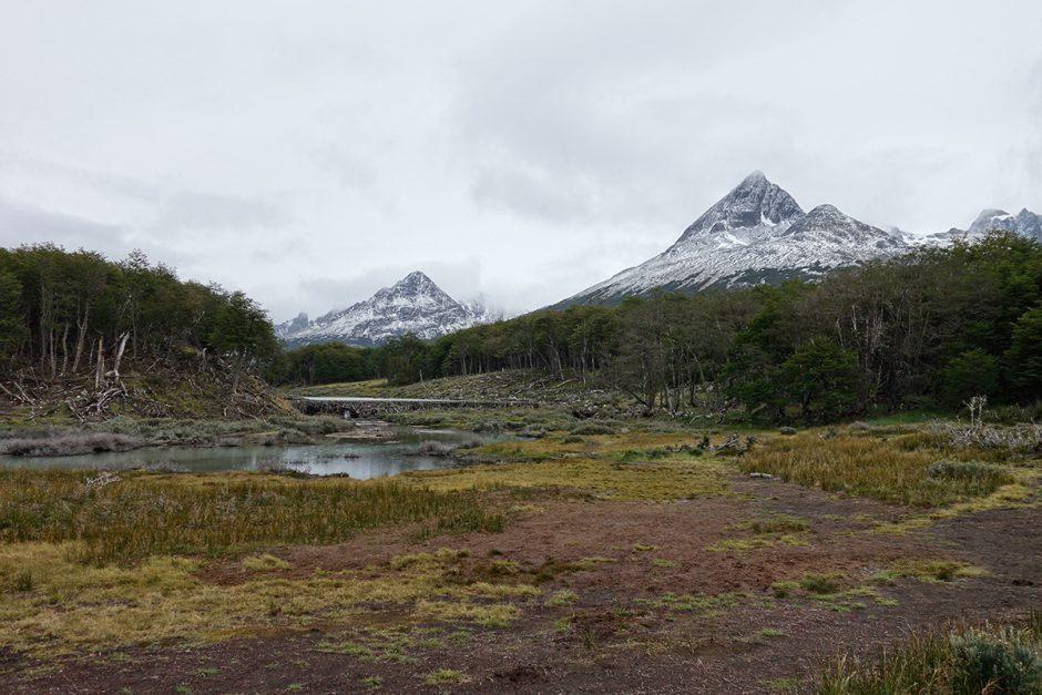 www.wildandfit.net-feuerland-patagonien-ushuaia-magellan-6