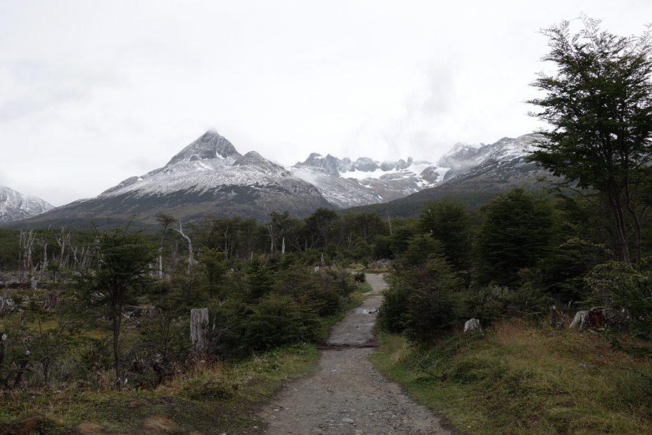 www.wildandfit.net-feuerland-patagonien-ushuaia-magellan-7