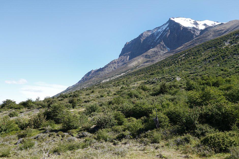 www.wildandfit.net_patagonien_torres_del_paine_chile_67