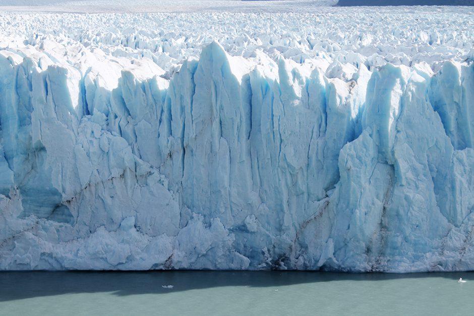 www.wildandfit.net_patagonien_torres_del_paine_chile_77