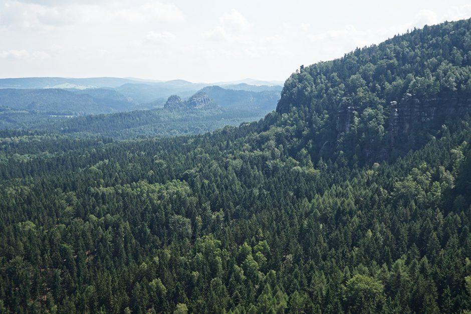 wildandfit-elbsandsteingebirge-saechsischeschweiz-schmilka-basteibrücke-13