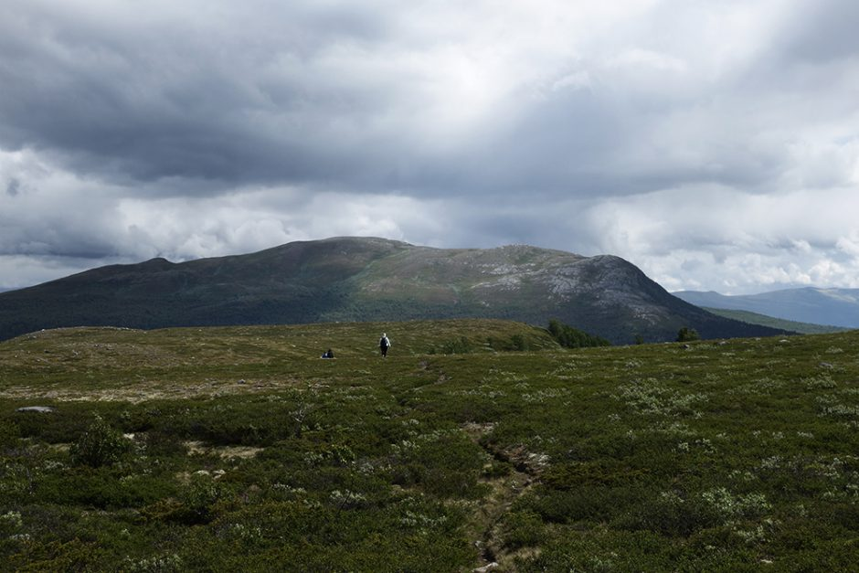 wildandfit-norwegen-reisen-jotunheimen-dovrjefjell-snohetta-13
