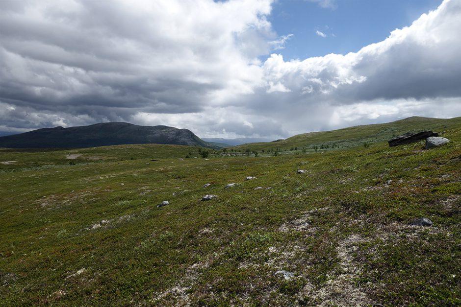 wildandfit-norwegen-reisen-jotunheimen-dovrjefjell-snohetta-16