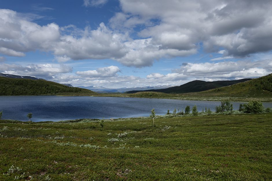 wildandfit-norwegen-reisen-jotunheimen-dovrjefjell-snohetta-17