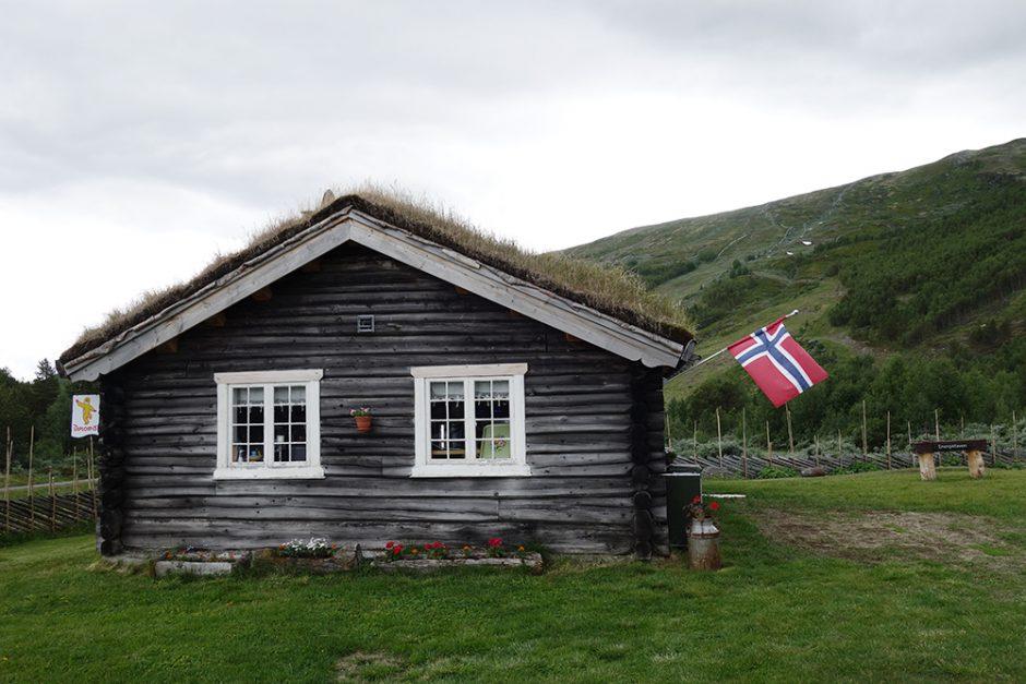 wildandfit-norwegen-reisen-jotunheimen-dovrjefjell-snohetta-18