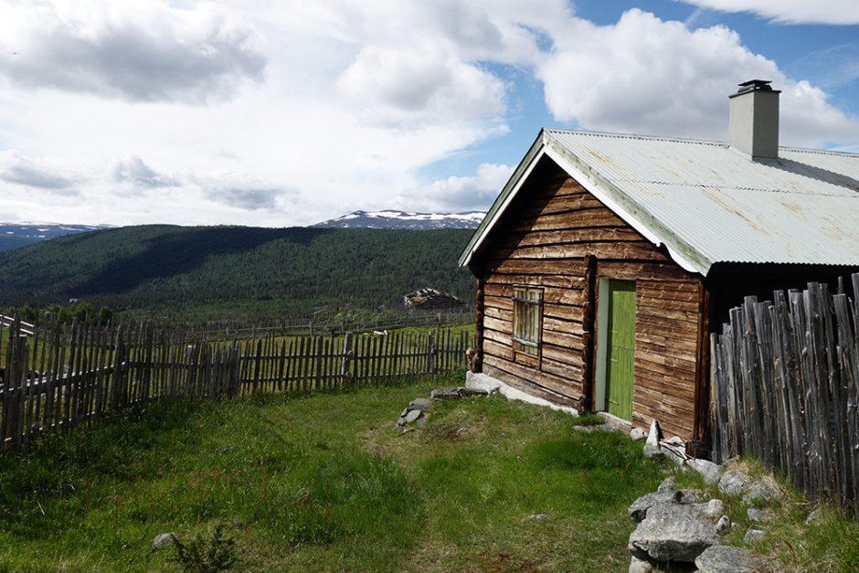 wildandfit-norwegen-reisen-jotunheimen-dovrjefjell-snohetta-31