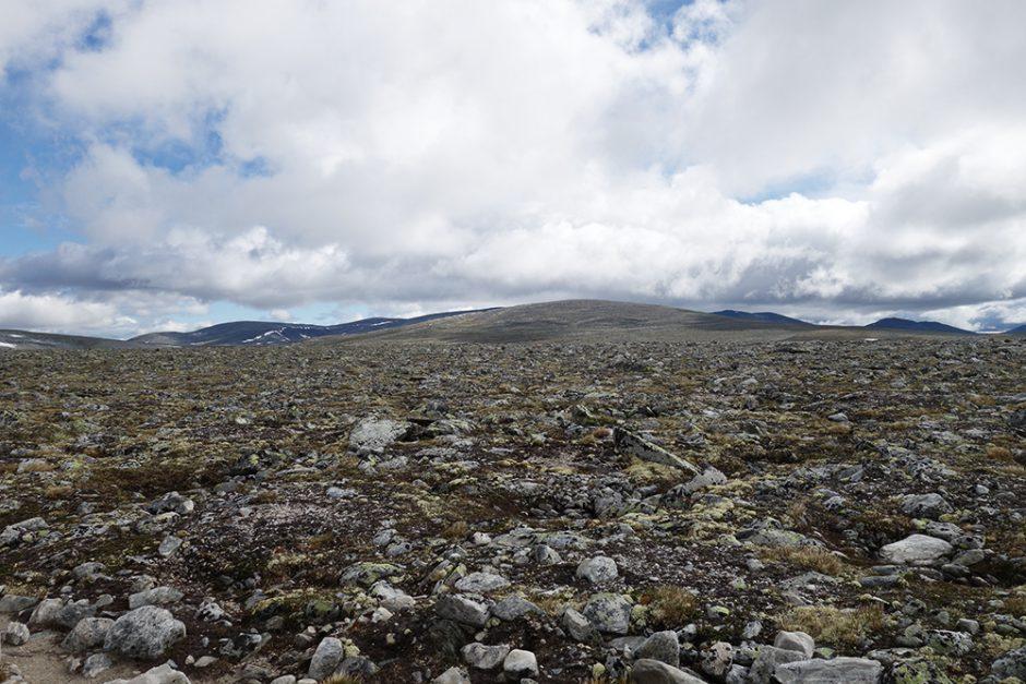 wildandfit-norwegen-reisen-jotunheimen-dovrjefjell-snohetta-35