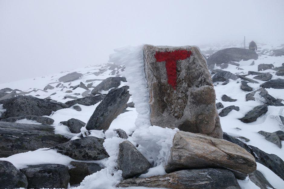 wildandfit-norwegen-reisen-jotunheimen-dovrjefjell-snohetta-41