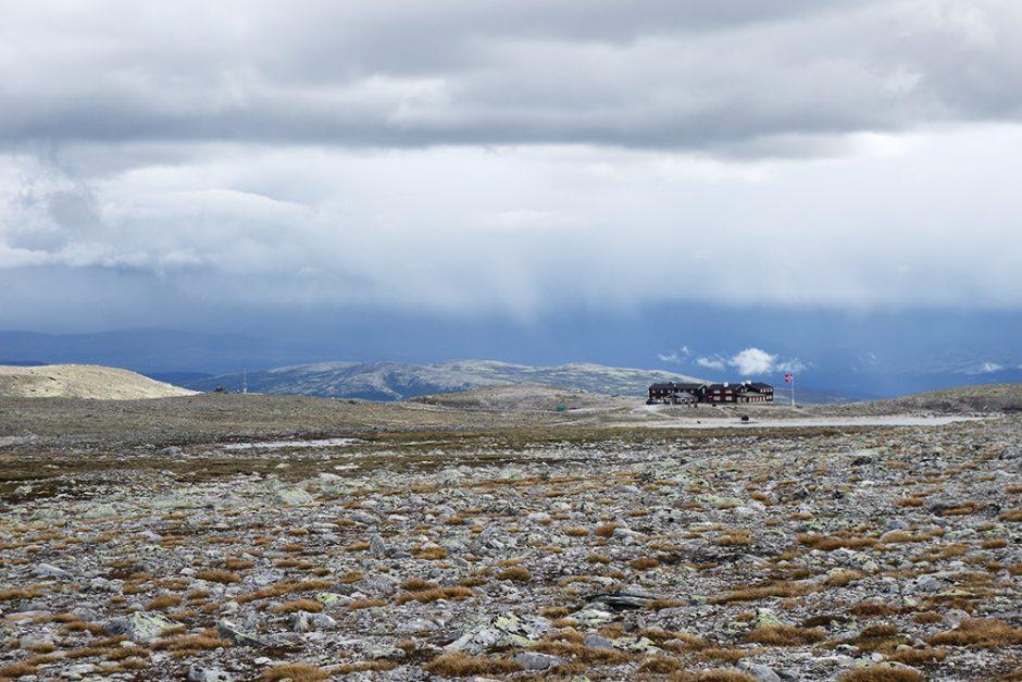 wildandfit-norwegen-reisen-jotunheimen-dovrjefjell-snohetta-44