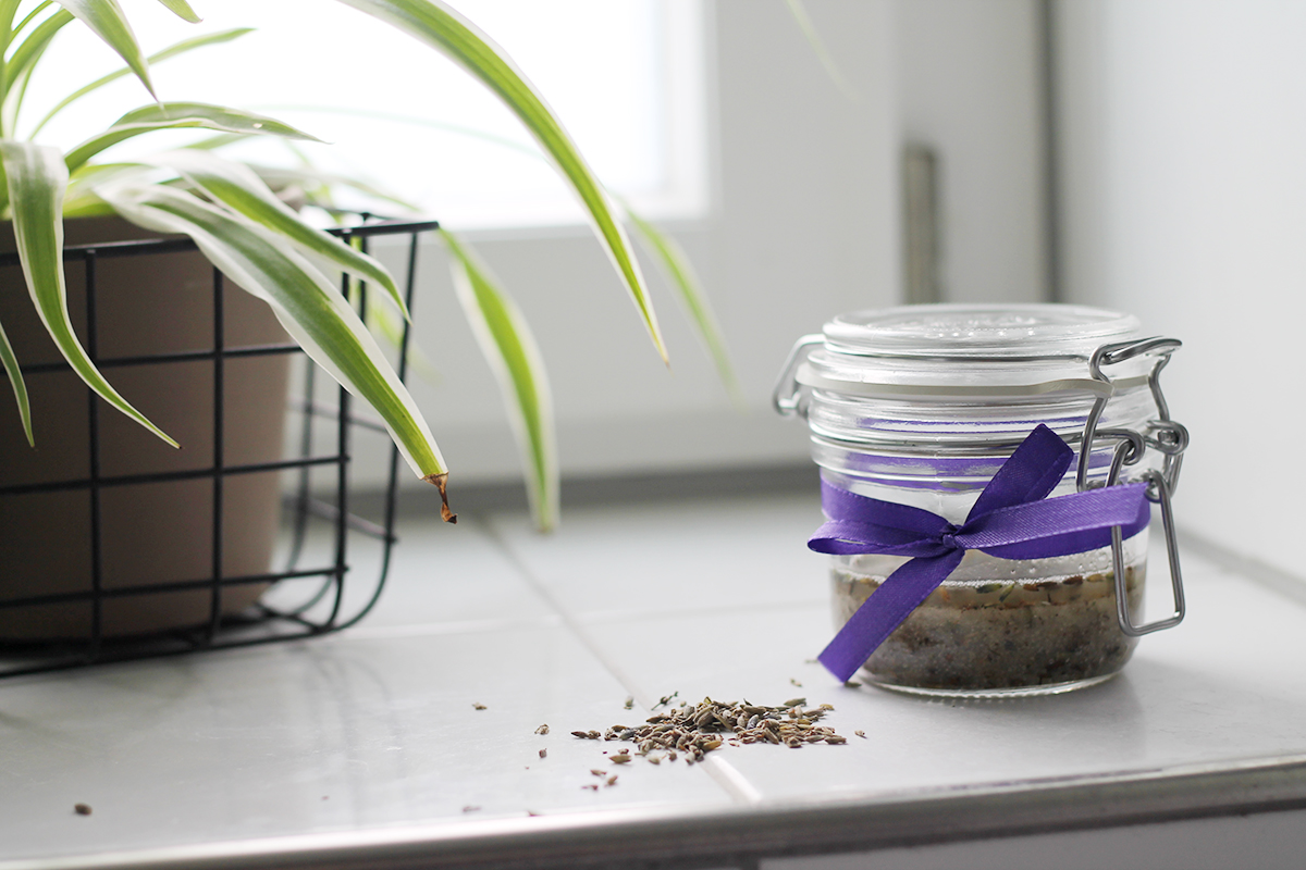 kokos lavendel peeling selber machen wild fit. Black Bedroom Furniture Sets. Home Design Ideas