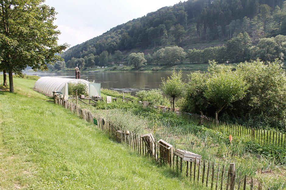 wildandfit-schmilka-elbsandsteingebirge-saechsische-schweiz-muehle-wellness-nachhaltig-hotel-12