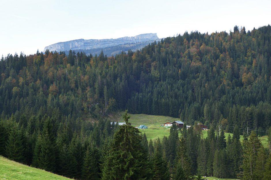 wildandfit-oberstdorf-wandern-sport-scheck-12h-kleinwalsertal-16