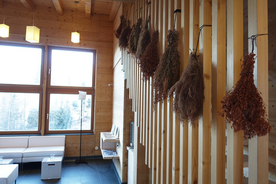 wildandfit-forsthofalm-sauna-wellness-lifestyle-leogang-16